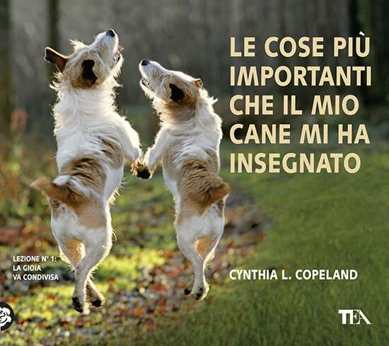 """Foto tratta da """"Le cose più importanti che il mio cane mi ha insegnato"""" di Cynthia L. Copeland © 2014 TEA S.r.l., Milano"""
