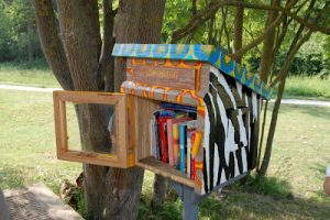 Little free library Vigna Clara