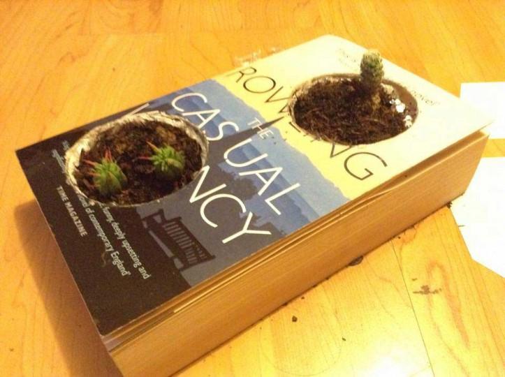 rowling-piante