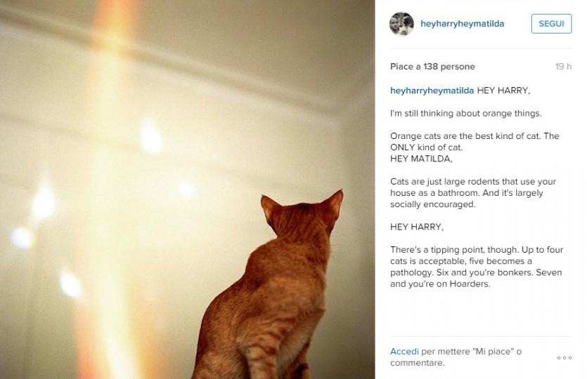 post 1 instagram