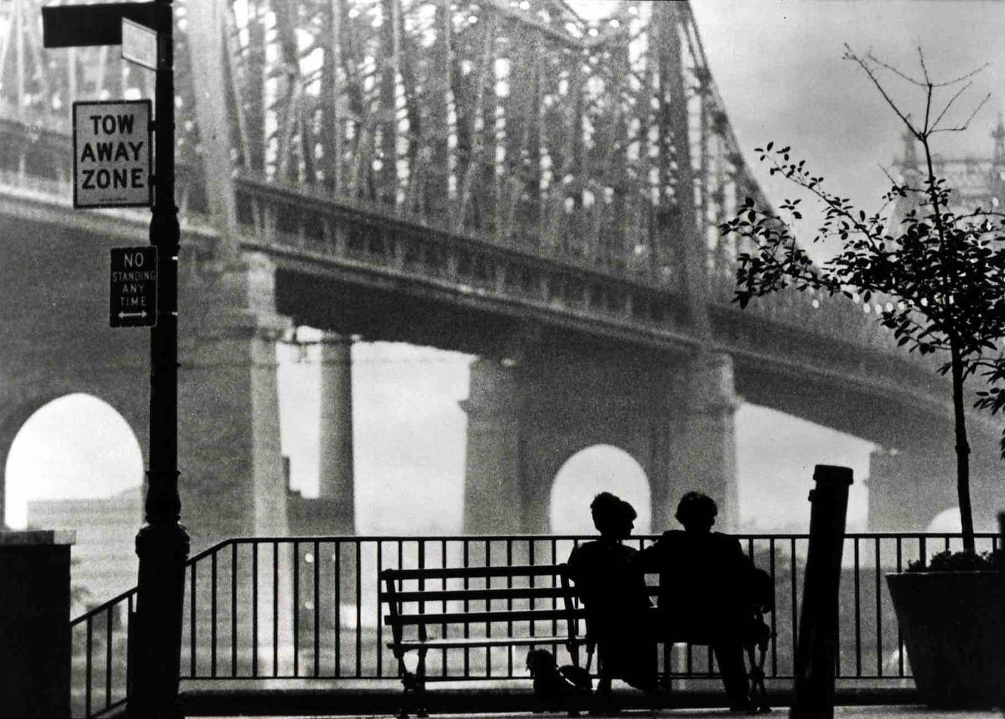 Le Citazioni Letterarie In 10 Film Di Woody Allen E La Sua