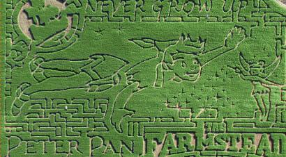Da Peter Pan ad Alice: labirinti letterari nei campi di mais, visti dall'alto