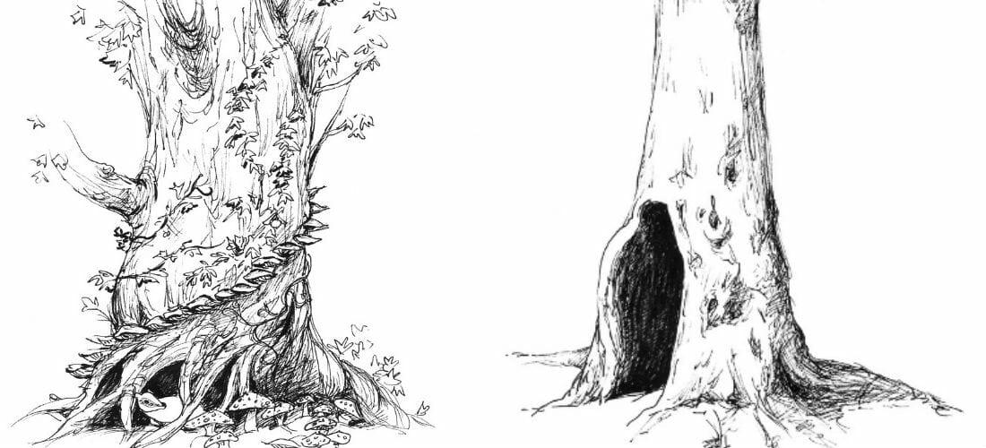 """Gli alberi """"letterari"""" raccontati nei romanzi - Le illustrazioni"""