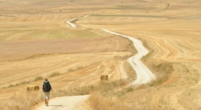 Cammino di Santiago: la guida in 36 tappe