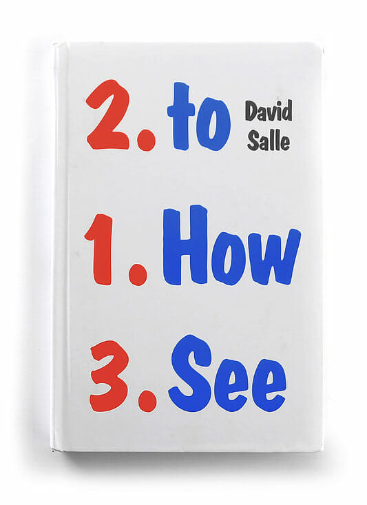 """How to See"" - David Salle"