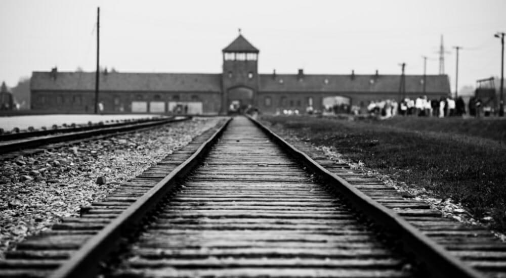 """""""Non c'è una fine"""": il libro che trasmette la memoria di Auschwitz"""
