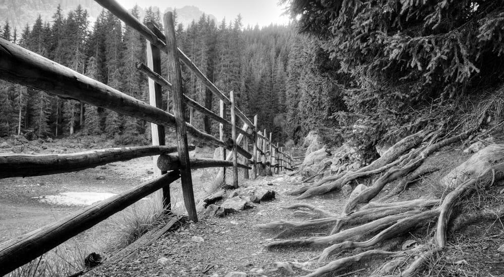"""""""L'anima della frontiera"""", un """"western letterario"""" per Matteo Righetto"""