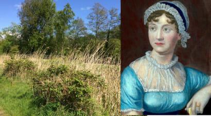 Viaggio nei luoghi di Jane Austen: dalla campagna alle cittadine dell'Hampshire
