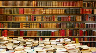 Il ritorno (e la storia) dei romanzi in versi