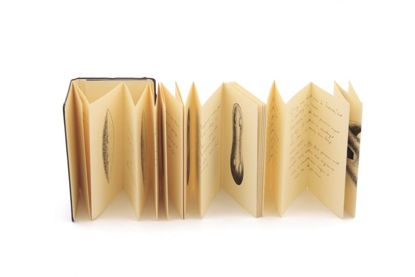 Moleskine Foundation collection