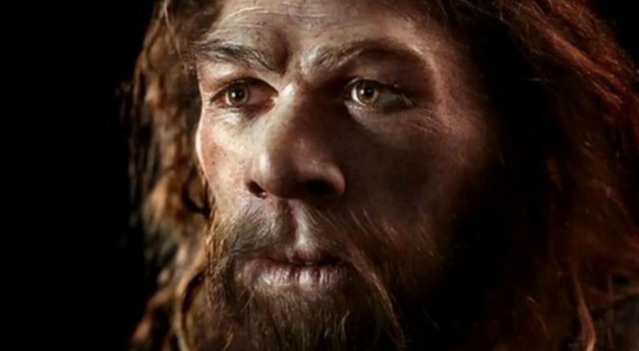 L'uomo di Neandertal non era poi così diverso da noi