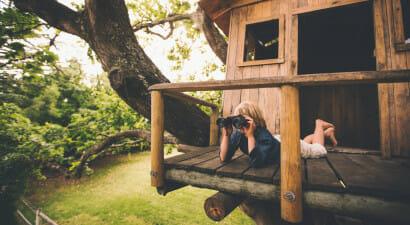 Nascondersi in una casa sull'albero: libri e film per bambini che non vogliono crescere