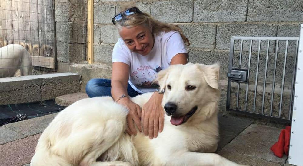 """Monica Pais racconta la """"Storia del cane che non voleva più amare"""""""