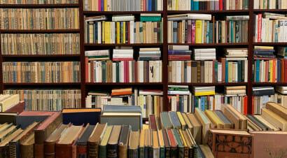 I libri sono