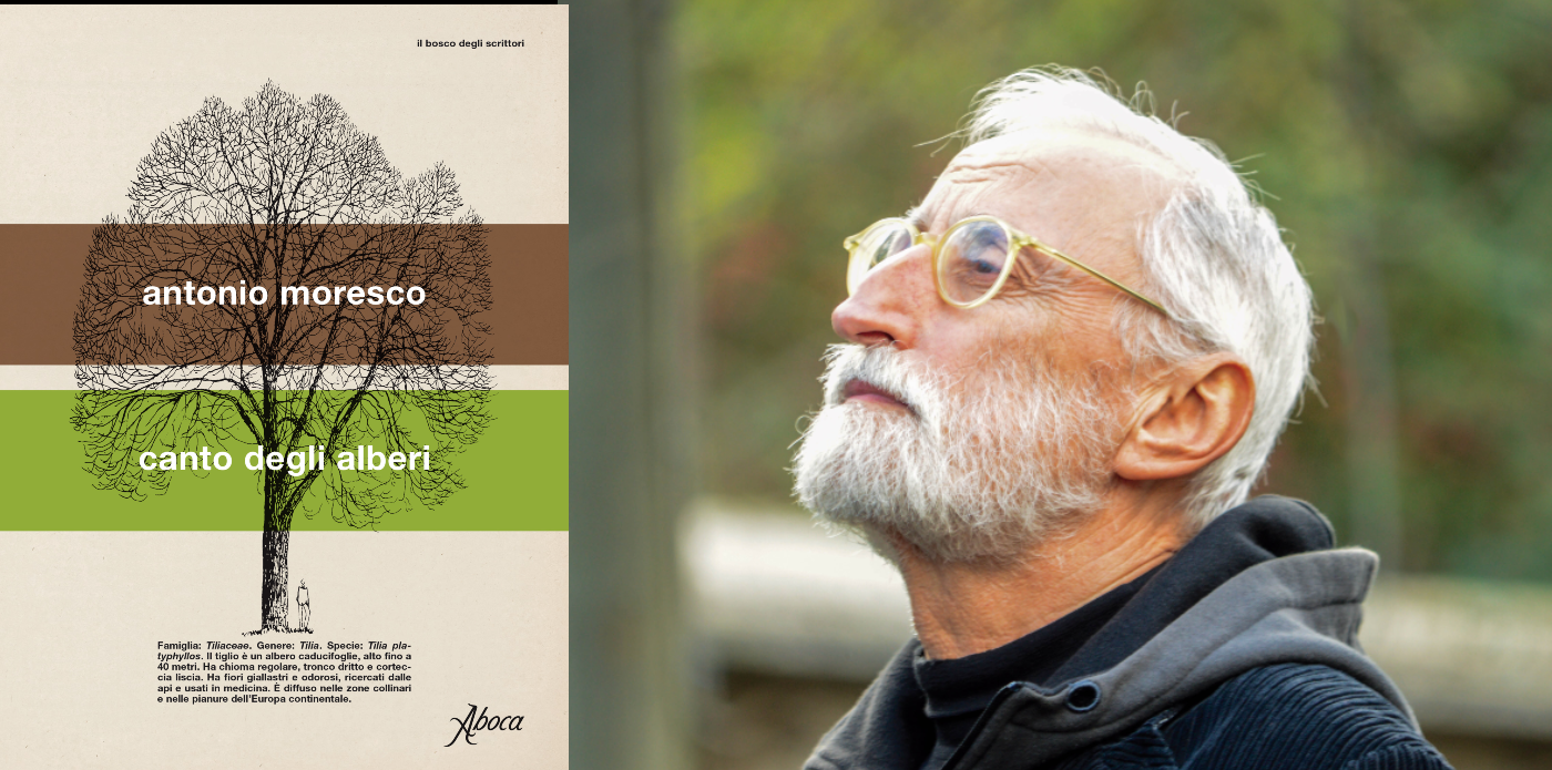 """""""Il canto degli alberi"""": Moresco ha trasformato la quarantena in una nuova esperienza di scrittura"""