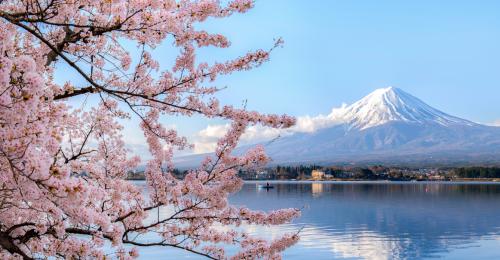 Libri sul Giappone: il Paese del Sol Levante
