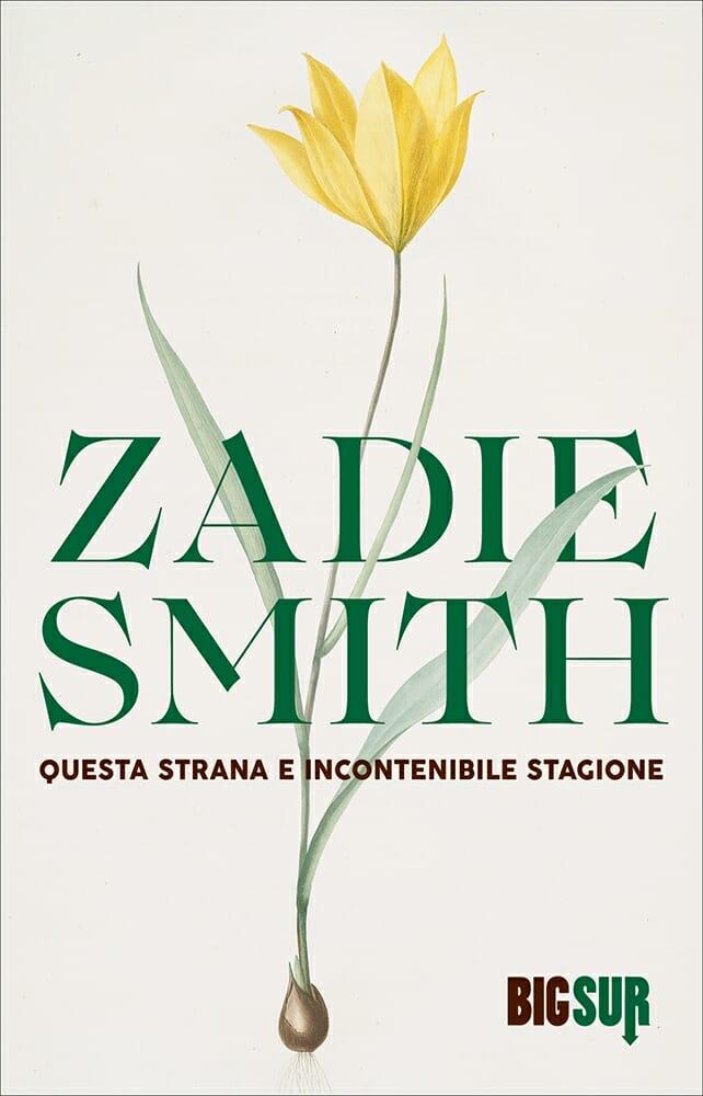zadie smith questa strana e incontenibile stagione