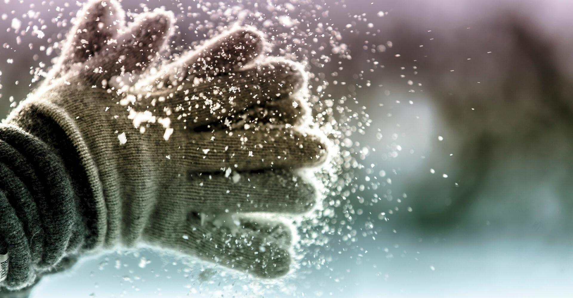 Guanti di ispirazione letteraria: un regalo per lettori freddolosi