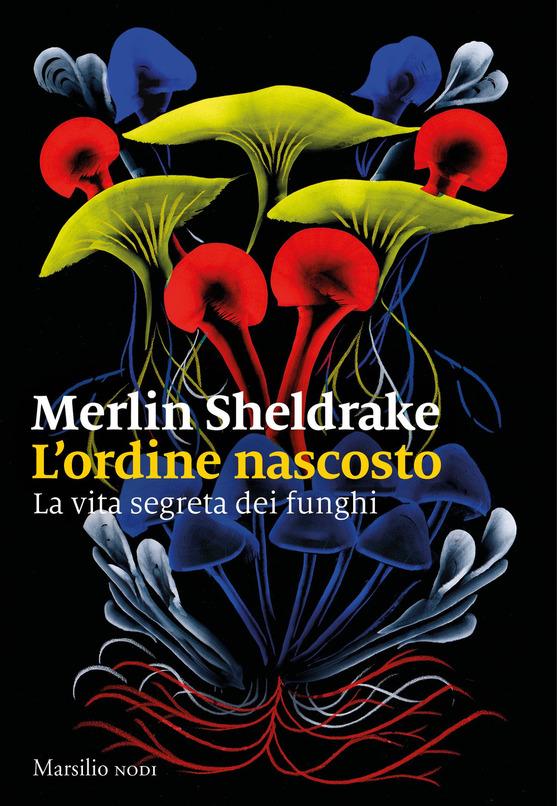 L'ordine nascosto di Merlin Sheldrake