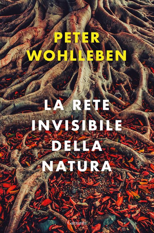 la rete invisibile della natura, saggio di peter wohlleben